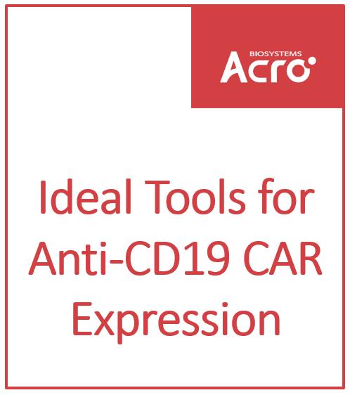 Ideal Tools